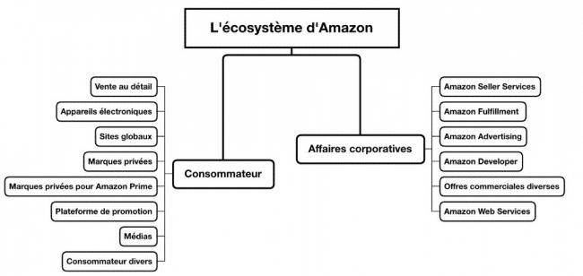 ecosystème amazon