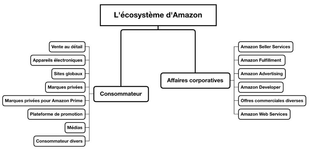 ecosystème amazone